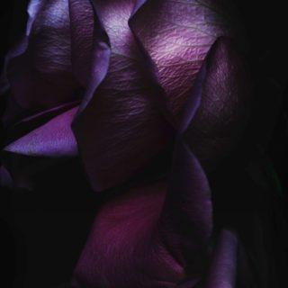 Hitam ungu keren iOS9 iPhone4s Wallpaper