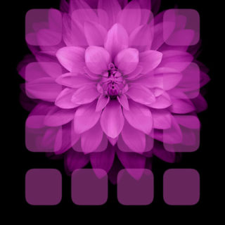 rak ungu Hitam bungas iPhone5s / iPhone5c / iPhone5 Wallpaper
