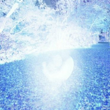 Pohon biru iPhone6s / iPhone6 Wallpaper