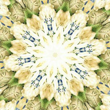Bunga imut iPhone6s / iPhone6 Wallpaper