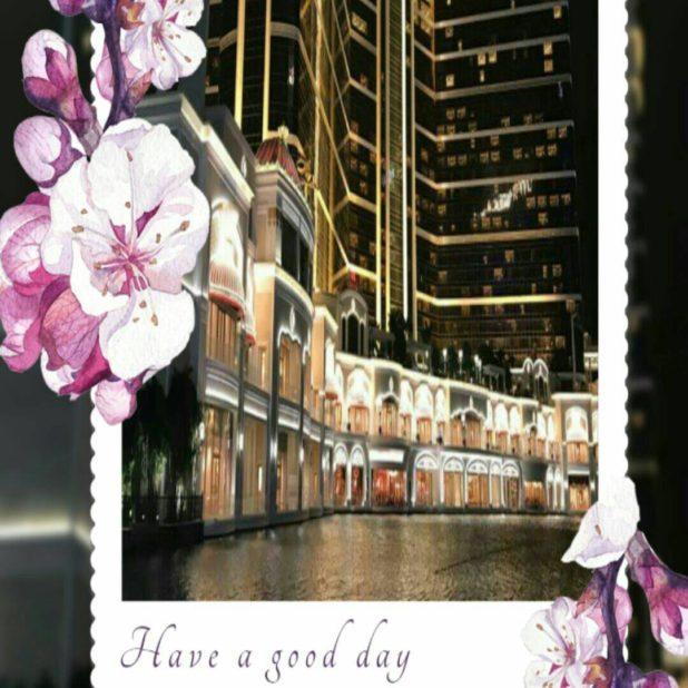 Bingkai bunga iPhone7 Plus Wallpaper