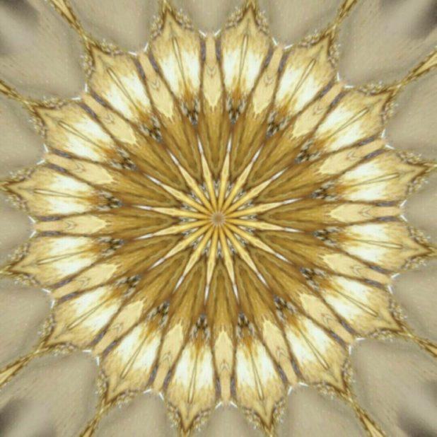 Lingkaran radial iPhone7 Plus Wallpaper