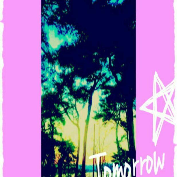 Pohon pantai iPhone7 Plus Wallpaper