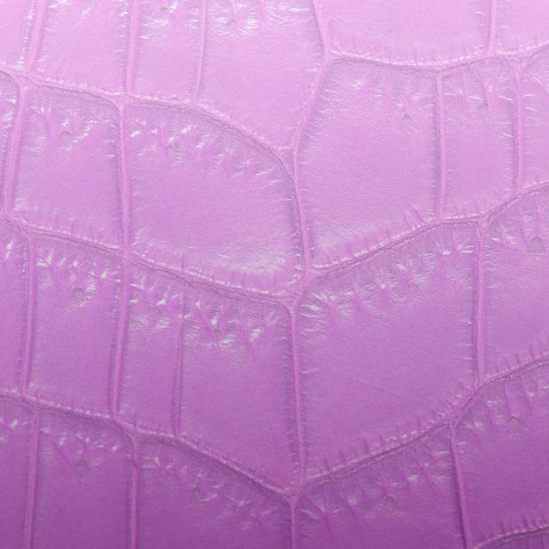 Daun vena gradasi Berwarna merah muda iPhone7 Plus Wallpaper