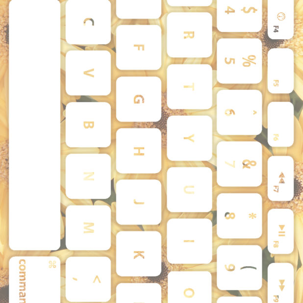 Keyboard bunga putih kekuningan iPhone7 Plus Wallpaper