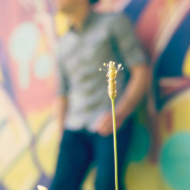 bunga karakter blur laki-laki iPhone7 Plus Wallpaper
