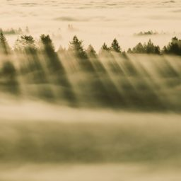 風景霧の iPad / Air / mini / Pro 壁紙
