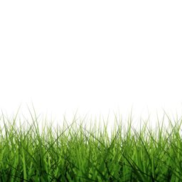 クール芝生緑の iPad / Air / mini / Pro 壁紙