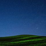 景色夜空緑