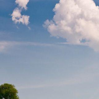 風景草原黄の iPhone4s 壁紙