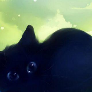 猫黒猫の iPhone4s 壁紙