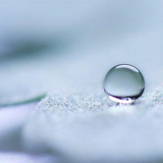 自然水滴の iPhone4s 壁紙