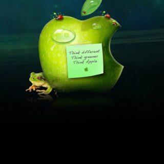 Appleカエル緑の iPhone4s 壁紙