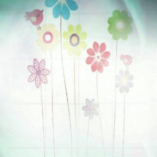 花 鳥の iPhone5s / iPhone5c / iPhone5 壁紙