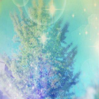 木 泡の iPhone5s / iPhone5c / iPhone5 壁紙