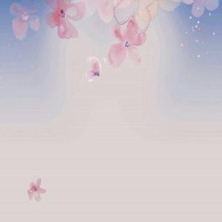 桜 空の iPhone5s / iPhone5c / iPhone5 壁紙