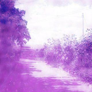 夏 小道の iPhone5s / iPhone5c / iPhone5 壁紙