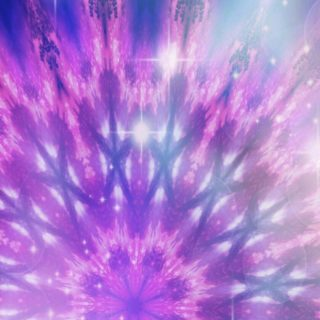 花 紫の iPhone5s / iPhone5c / iPhone5 壁紙