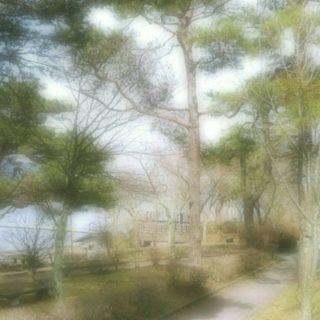 海辺 遊歩道の iPhone5s / iPhone5c / iPhone5 壁紙