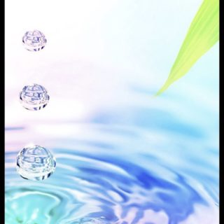 水滴 葉っぱの iPhone5s / iPhone5c / iPhone5 壁紙