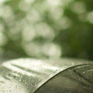 自然水滴緑の iPhone5s / iPhone5c / iPhone5 壁紙