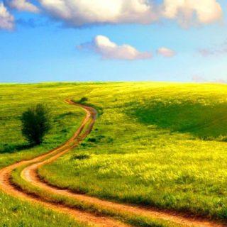風景草原の iPhone5s / iPhone5c / iPhone5 壁紙