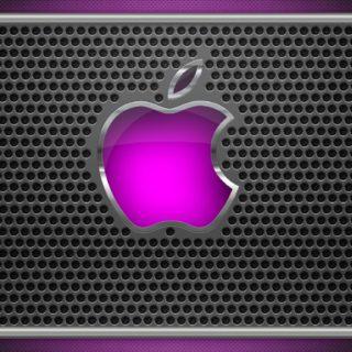 Apple紫の iPhone5s / iPhone5c / iPhone5 壁紙