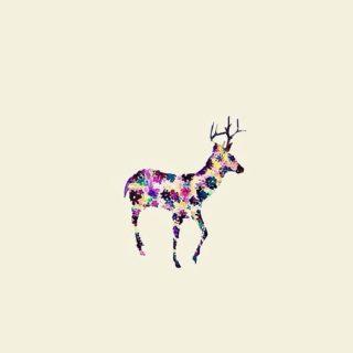 動物絵鹿の iPhone5s / iPhone5c / iPhone5 壁紙