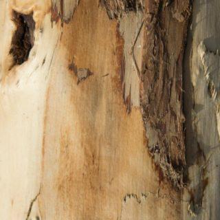 壁木茶の iPhone5s / iPhone5c / iPhone5 壁紙