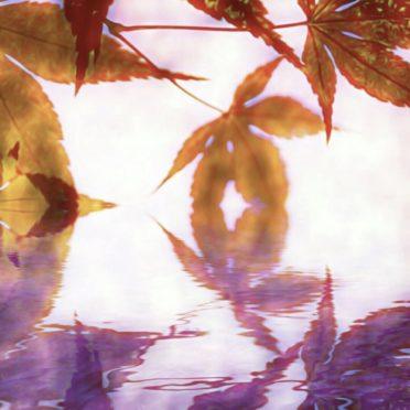 紅葉 湖の iPhone6s / iPhone6 壁紙
