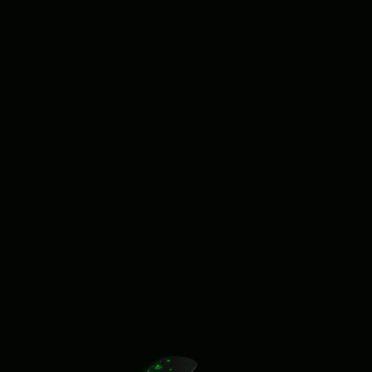 クールきのこ黒の iPhone6s / iPhone6 壁紙