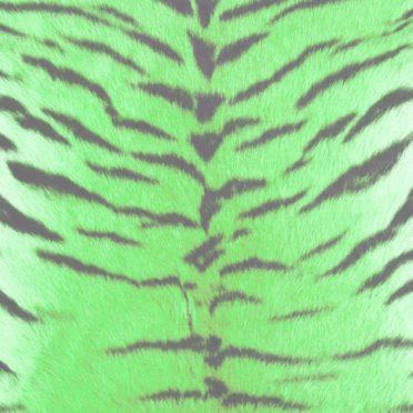 毛皮模様トラ緑の iPhone6s / iPhone6 壁紙