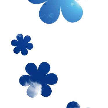 白青可愛い花シンプル
