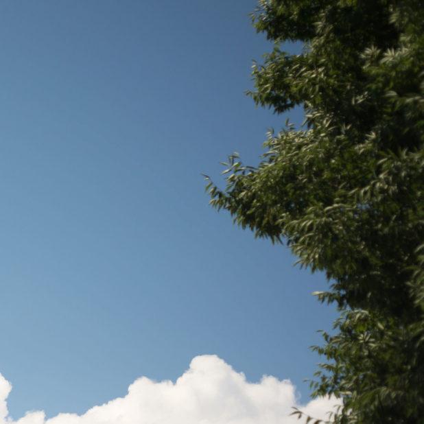 風景雲空の iPhone6s Plus / iPhone6 Plus 壁紙