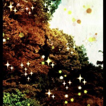 緑 光の iPhone7 壁紙