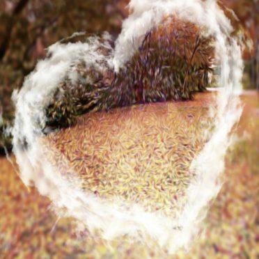 落ち葉 ハートの iPhone7 壁紙