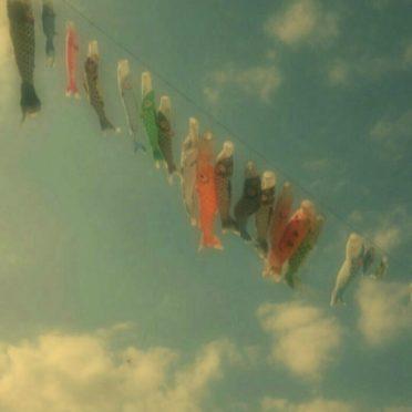こいのぼり 空の iPhone7 壁紙