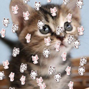ネコ イラストの iPhone7 壁紙