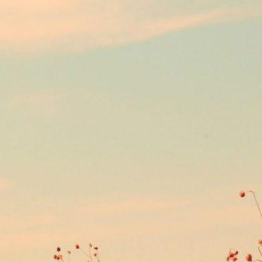 風景空の iPhone7 壁紙