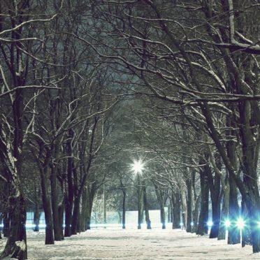 風景木雪の iPhone7 壁紙