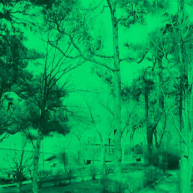 遊歩道 緑 壁紙の iPhone7 Plus 壁紙